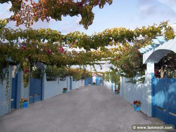 immobilier tunisie location vacances ras jebel villas meubl es pied ds l 39 eau et en plein. Black Bedroom Furniture Sets. Home Design Ideas
