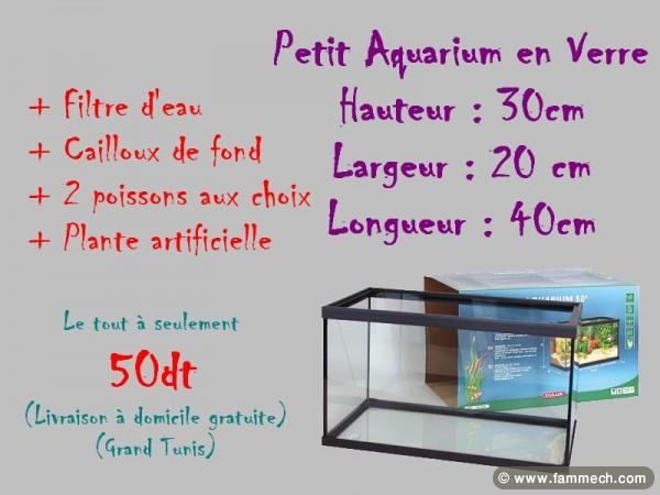 Acheter aquarium sur internet for Acheter plante sur internet
