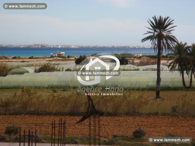Immobilier tunisie vente maison mahdia immeuble avec for Prix du terrain