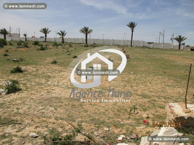 Immobilier tunisie terrain vendre mahdia terrain pour promoteur et autr - Comment vendre a un promoteur ...