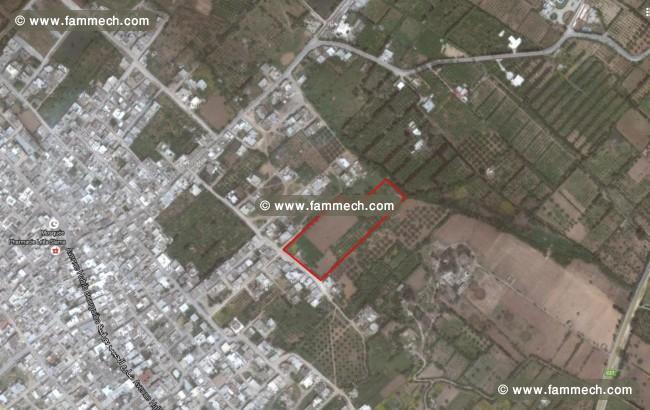 Immobilier tunisie terrain vendre korba terrain pour promoteur immobilier - Comment vendre a un promoteur ...