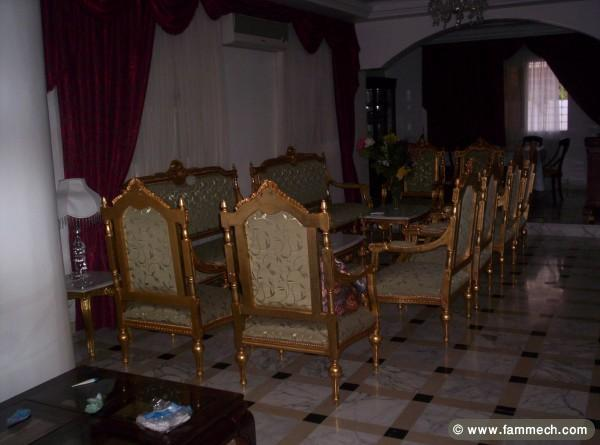 Bonnes affaires tunisie maison meubles d coration for Salon louis 16