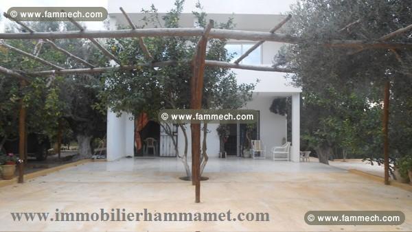 Immobilier tunisie vente maison hammamet vente maison for Achat maison campagne