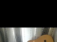 Une guitare sèche