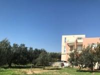 Ferme Malek T684 Hammamet