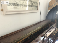 Magnifique piano pleyel unique fonctionnel