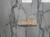 marbre importé lustré Flore Albo 96639639