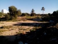 Terrain 1100m2 à Midoun Jerba