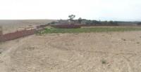 Terrain d'un hectar résidentiel titré à tajerouine