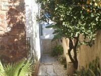 tres belle villa  a place pasteur tunis belvedere