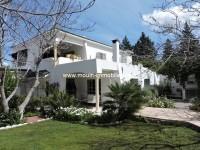 Villa Diane AV1264